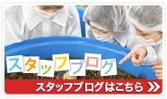 野草酵素ブログ