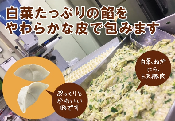 白菜たっぷり素朴な餡の水餃子