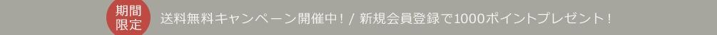 送料無料キャンペーン開催中!/ 新規会員登録で1000ポイントプレゼント!