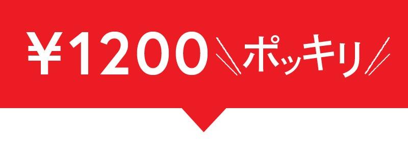 1200円ポッキリ