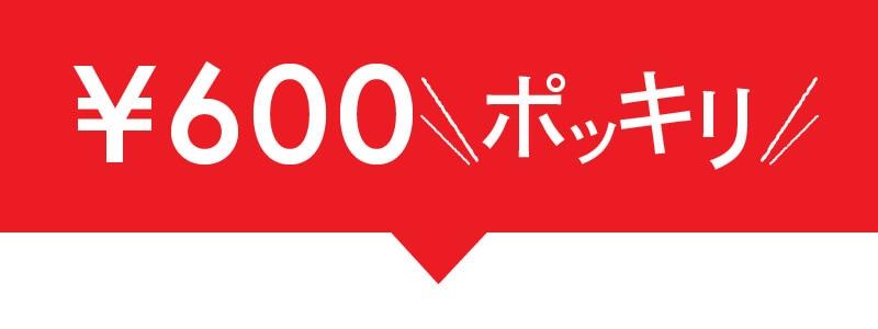 600円ポッキリ