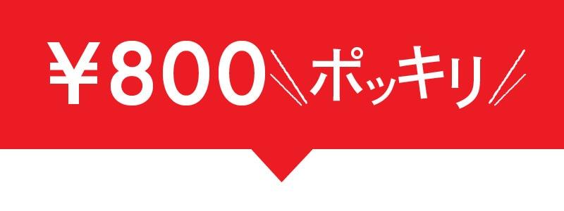 800円ポッキリ