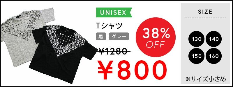 おしゃれなデザイン☆SHISKYペイズリー柄半袖Tシャツ