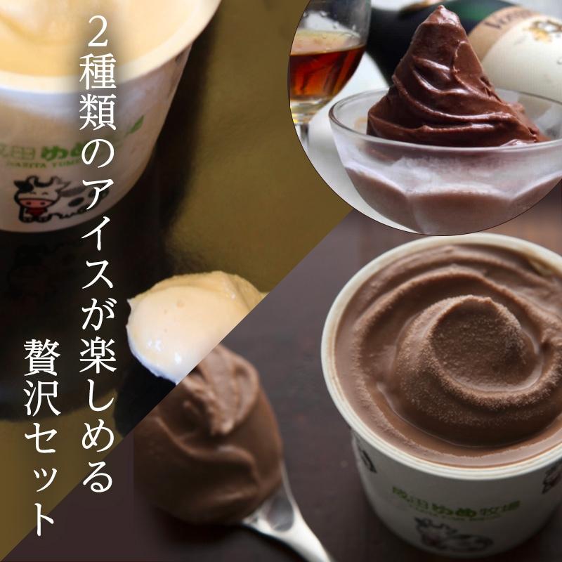 2種類のアイスが楽しめる贅沢セット 12個セット