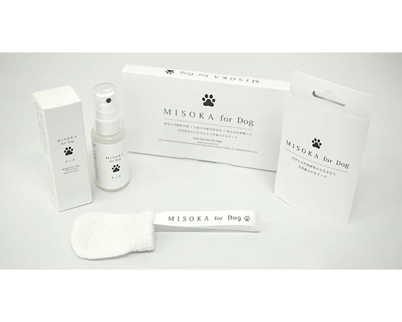 MISOKA for Dog