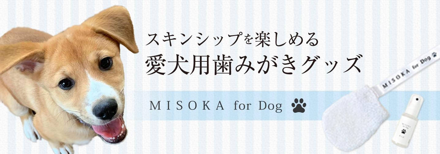 愛犬用歯磨きグッズ MISOKA for Dog