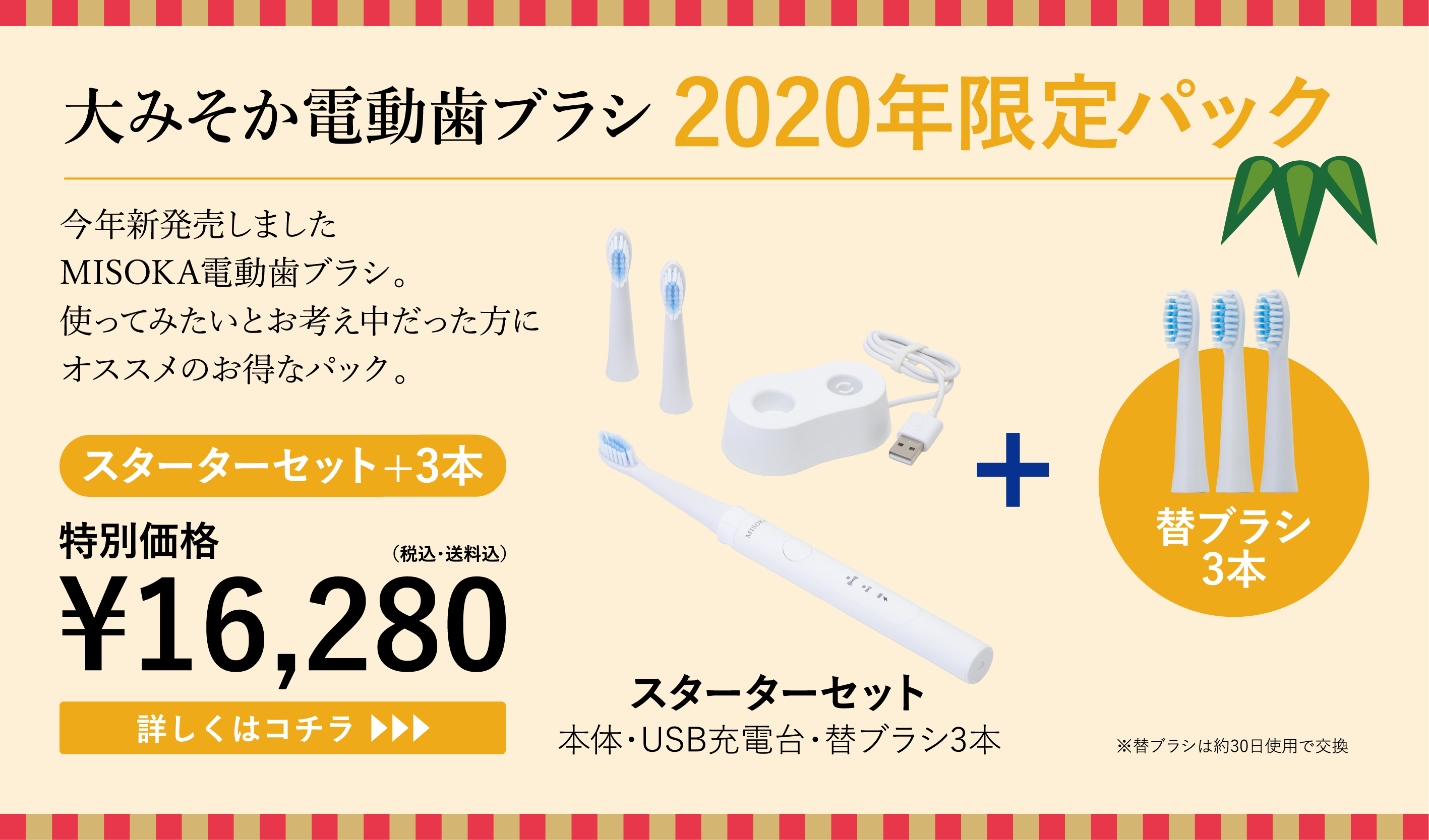 大みそか電動歯ブラシ2020年限定パック