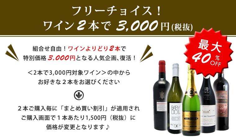 フリーチョイス!ワイン2本セットで3000円