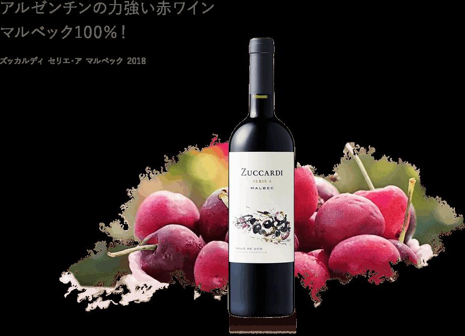 アルゼンチンの力強い赤ワインマルベック100%!