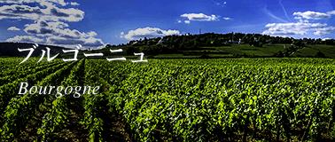 ブルゴーニュ地方のワイン